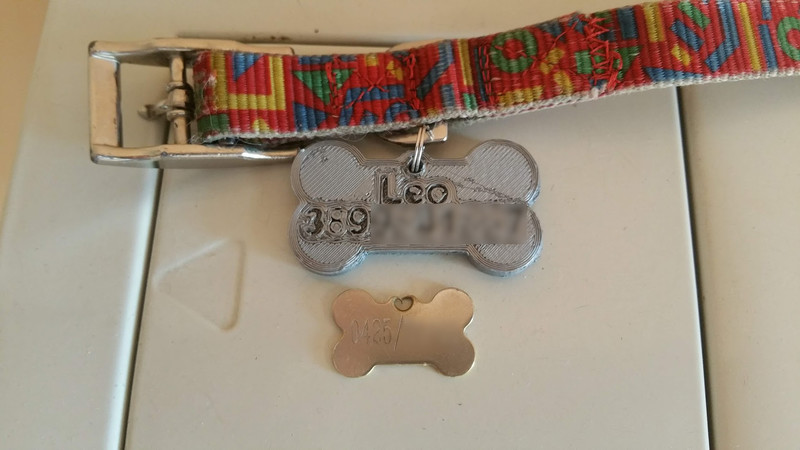 Dog tag back view